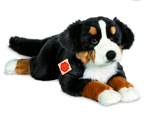 Teddy Hermann Berner Sennenhund liegend  60 cm
