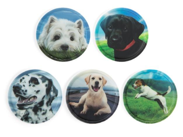 Ergobag Zubehör Klettie-Set Hunde 5 Teile