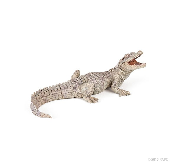 Papo 50141 weißes Krokodiljunges