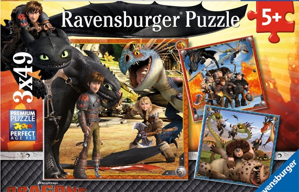 DreamWorks Dragons Puzzle Drachenreiter