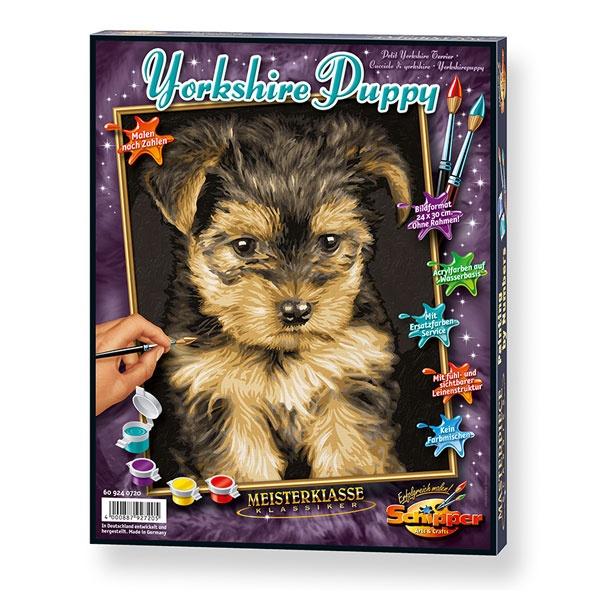 MNZ Yorkshire Puppy