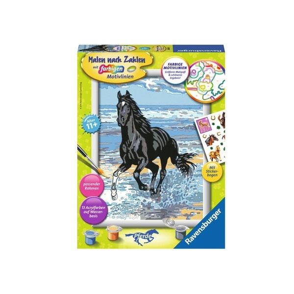 Malen nach Zahlen Pferd am Strand
