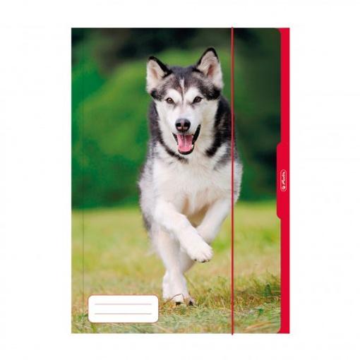 Herlitz Sammelmappe A3 Hund