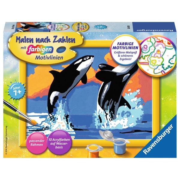 Malen nach Zahlen Verspielte Orcas