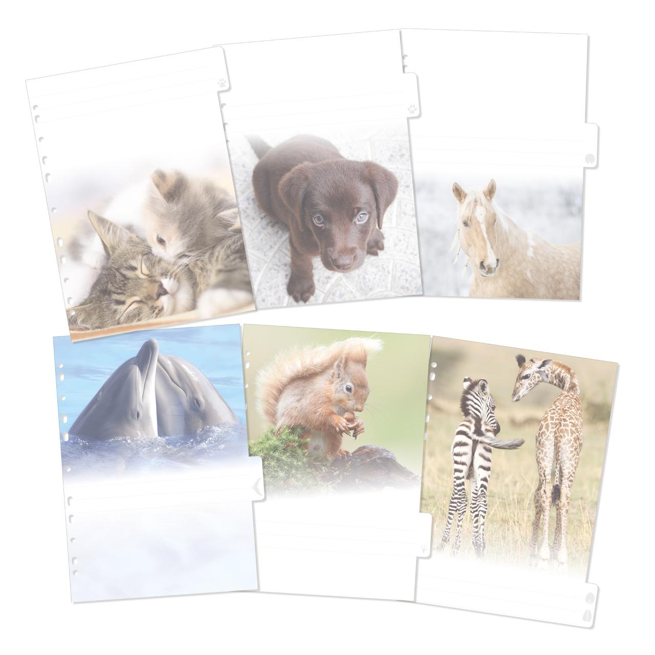 Herma Motiv Register A4 Tiere