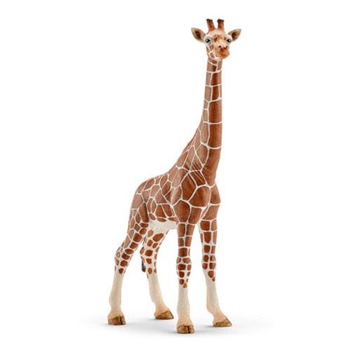 Schleich Wildlife Giraffenkuh 14750