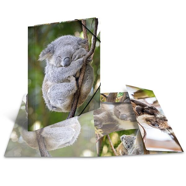 Herma Sammelmappe A3 Koala