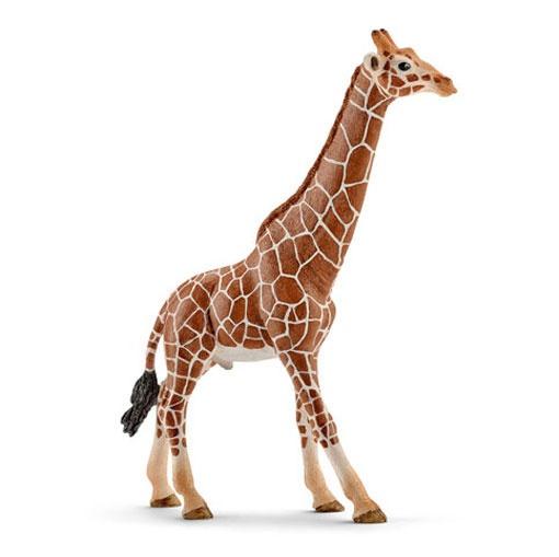 Schleich Wildlife Giraffenbulle 14749