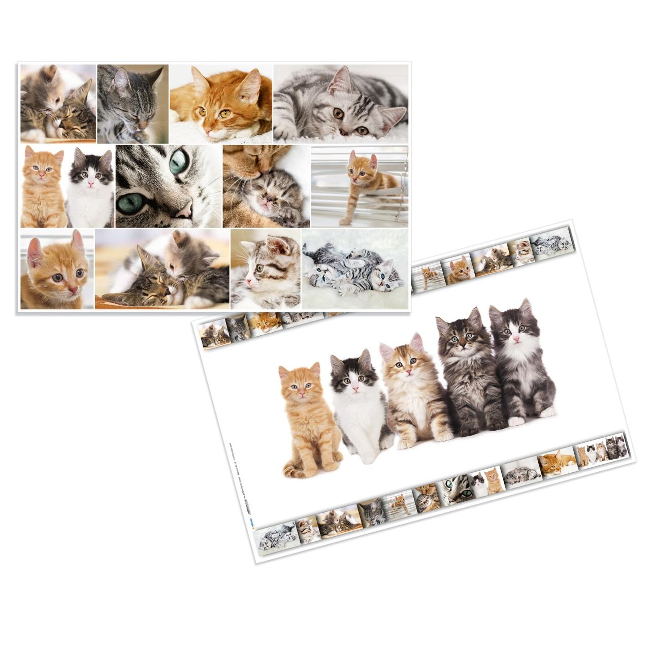 Herma Schreibunterlage Katzen