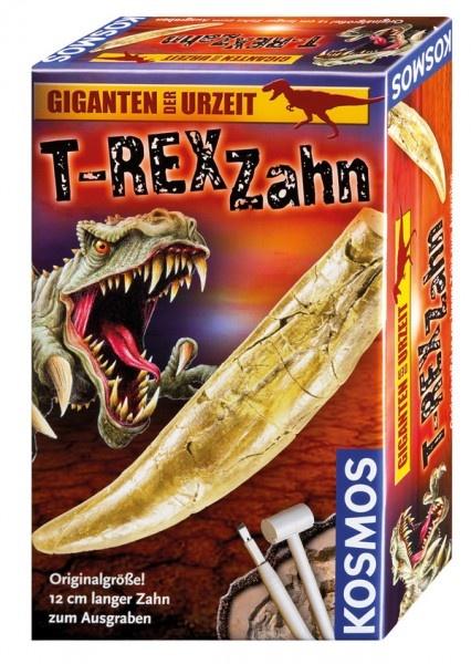 T-Rex Zahn Ausgrabungsset