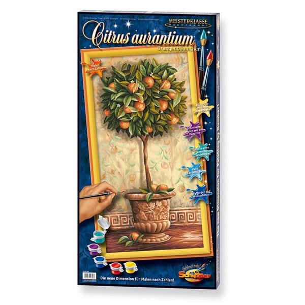 Schipper Malen nach Zahlen Citrus aurantium