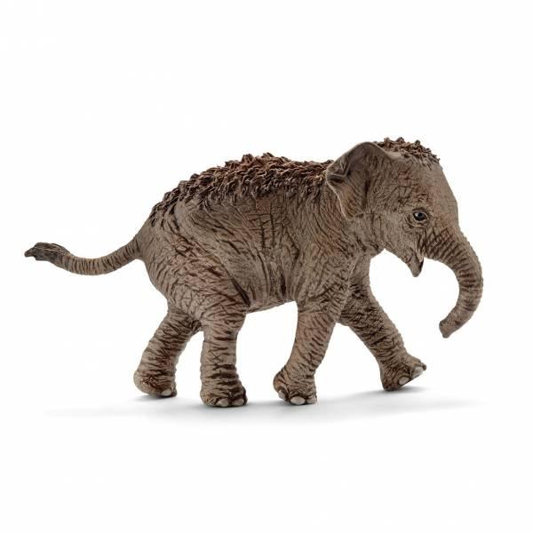 Schleich Wild Life Asiatisches Elefantenbaby 14755