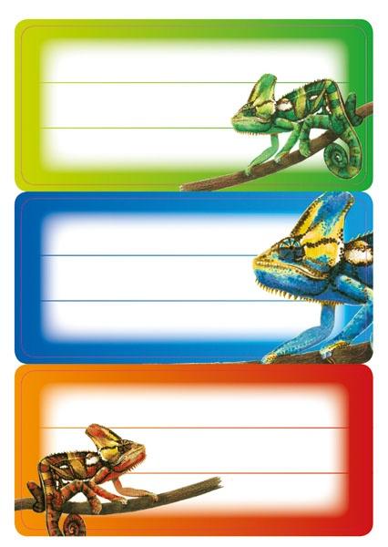 Herma Buch-Etiketten Gecko