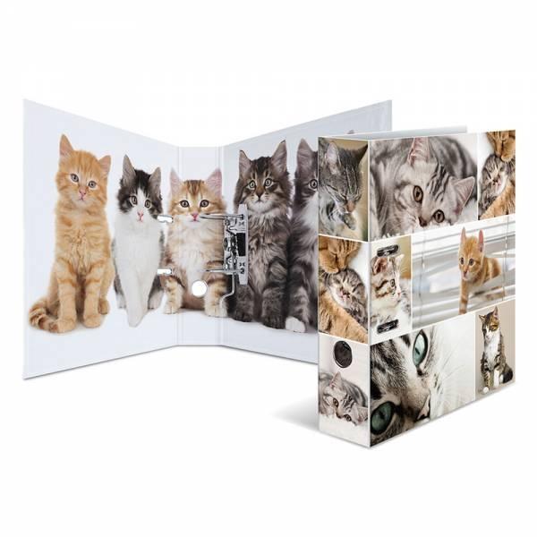 Herma Motivordner A4 Katzen