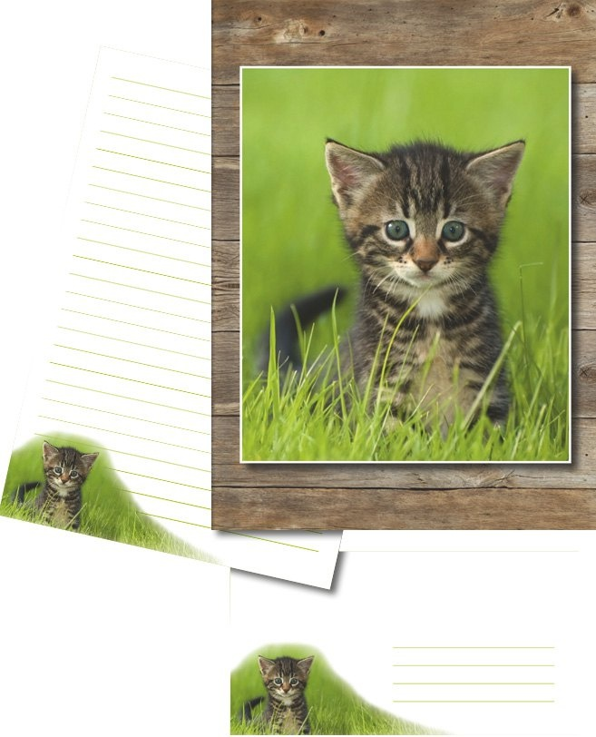 Briefpapier Briefmappe Hello Cat