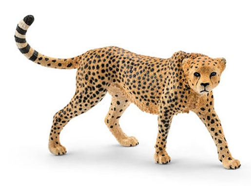 Schleich Wildlife Gepardin 14746