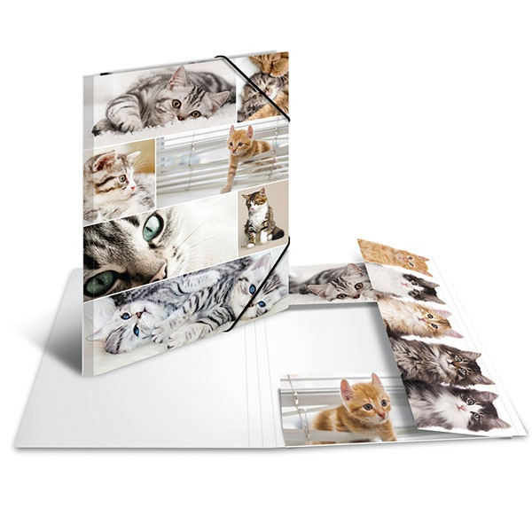 Herma Sammelmappe A3 Katzen