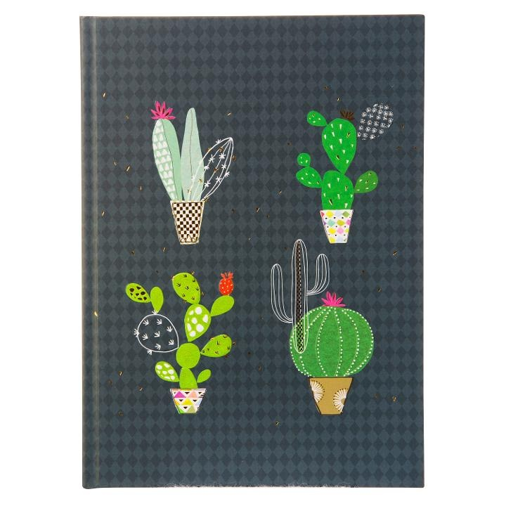 Goldbuch Turnowsky Notizbuch A5 Kaktus