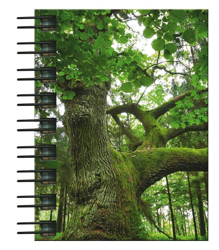 Hardcover-Spiralbuch A7 Baum