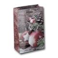 Papiertüte Weihnachtsapfel 12x6x19cm