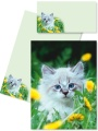 Briefpapier Briefmappe Katze