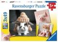 Ravensburger Puzzle Lustige Tierportraits 3 x 49 Teile