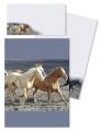 Briefpapier Briefmappe Pferde am Meer