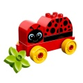 Lego Duplo 10859 Mein erster Marienkäfer - erste Bauerfolge